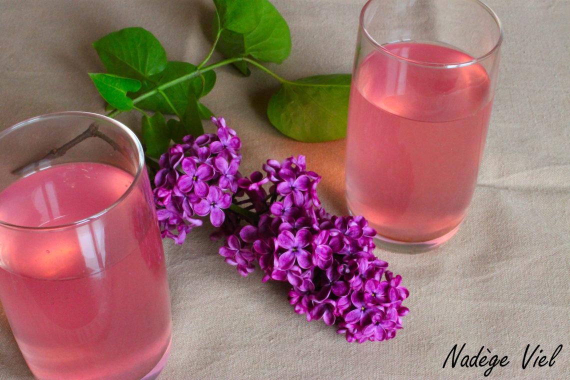 Boisson au lila - NV